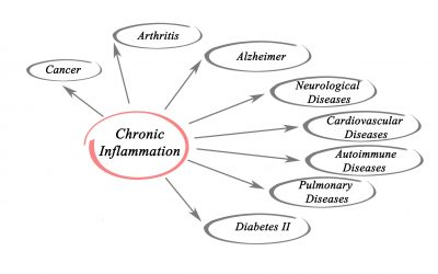 How Inflammation Affects Your Body and How Polyphenols Can Help
