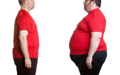 How Firmicutes and Bacteroidetes (Gut Bacteria) Affect Your Weight